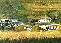 大屋顶下的朝鲜族人