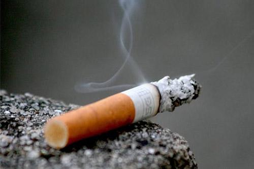11月17日国际肺
